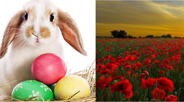 Easter and ANZAC hours