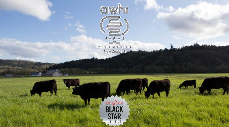 Ruapehu Angus from Awhi Farms
